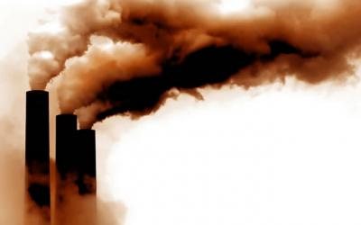 Hemp And Carbon Dioxide