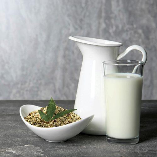 Organic Hemp Seed Milk