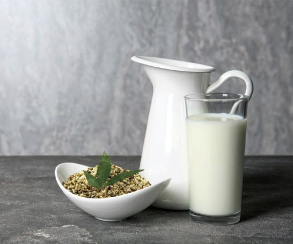 Homemade Hemp Seed Milk